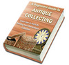 Thumbnail A Beginners Guide To Antique Collecting