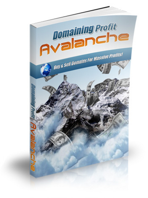 Product picture Domaining Profits Avalanche with Master Resale Right